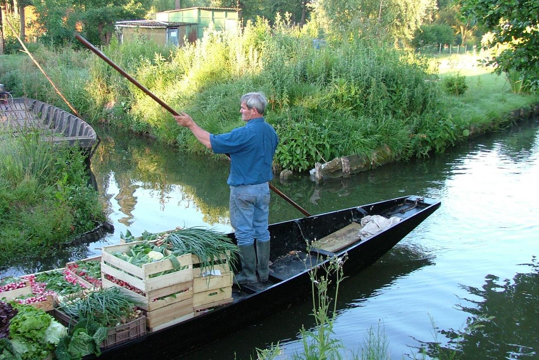 Maraîcher des hortillonnages d'Amiens sur sa barque chargée de légumes.