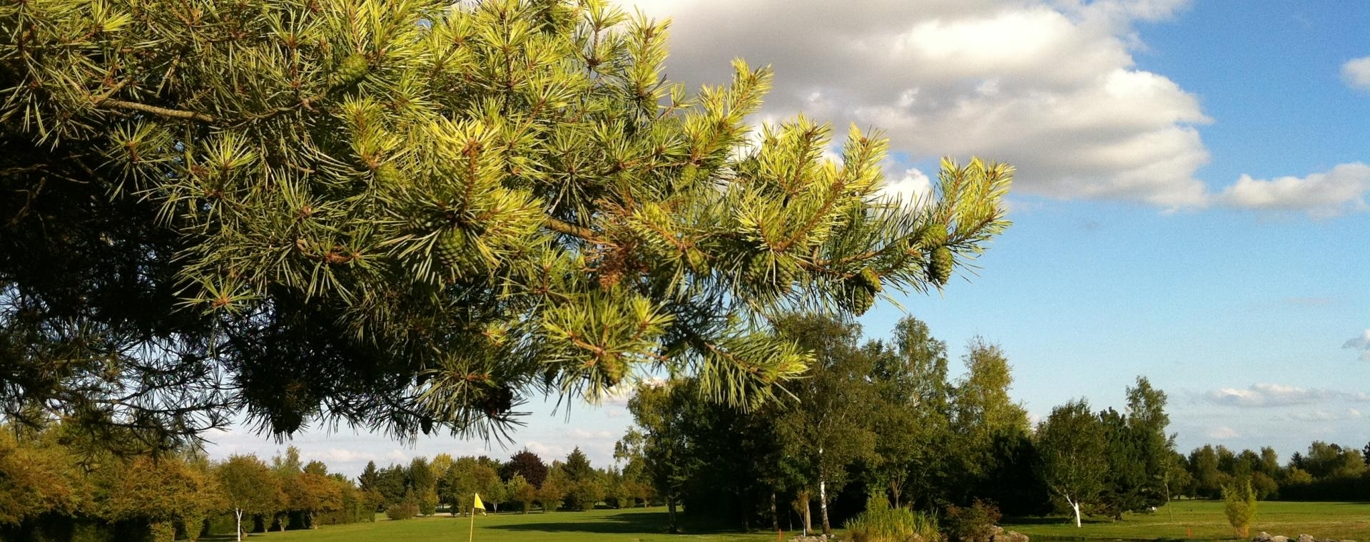 Le Golf Club du Grand Amiens