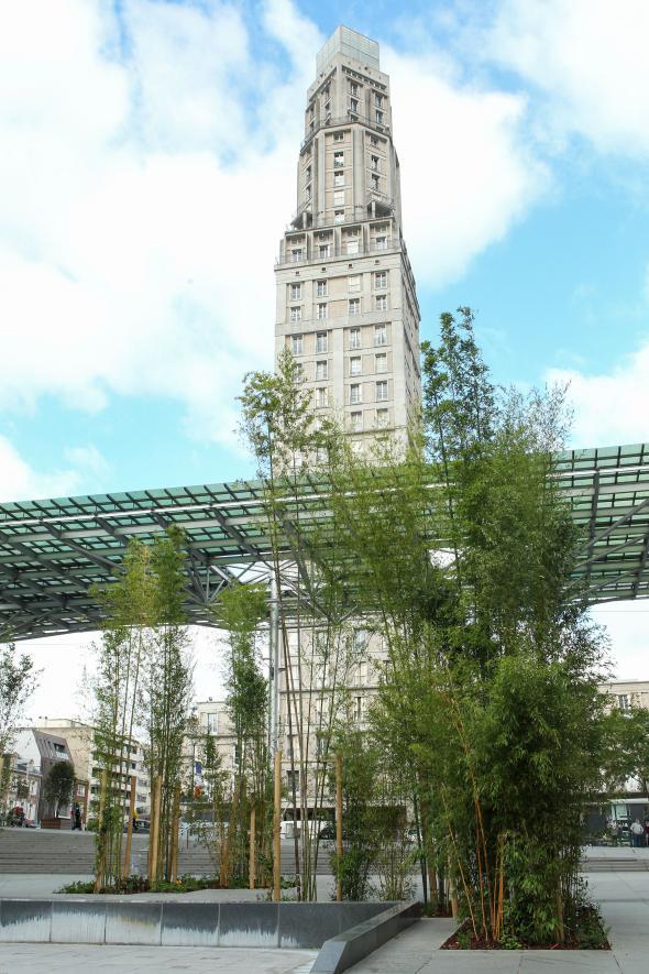 Bambouseraie place Alphonse Fiquet