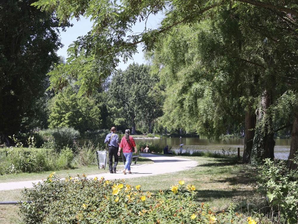 Balade au parc Saint-Pierre