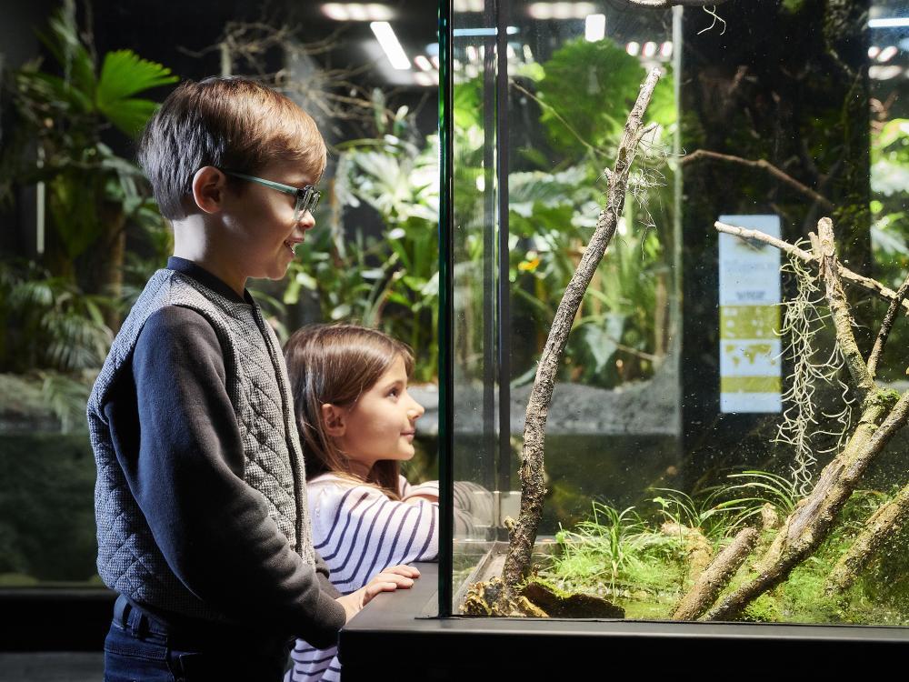 Vivarium zoo
