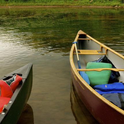 Photo de deux canoës amarés au bord d'un plan d'eau