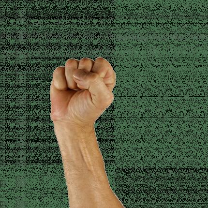 Photo d'un main symbolisant la langue des signes françaises