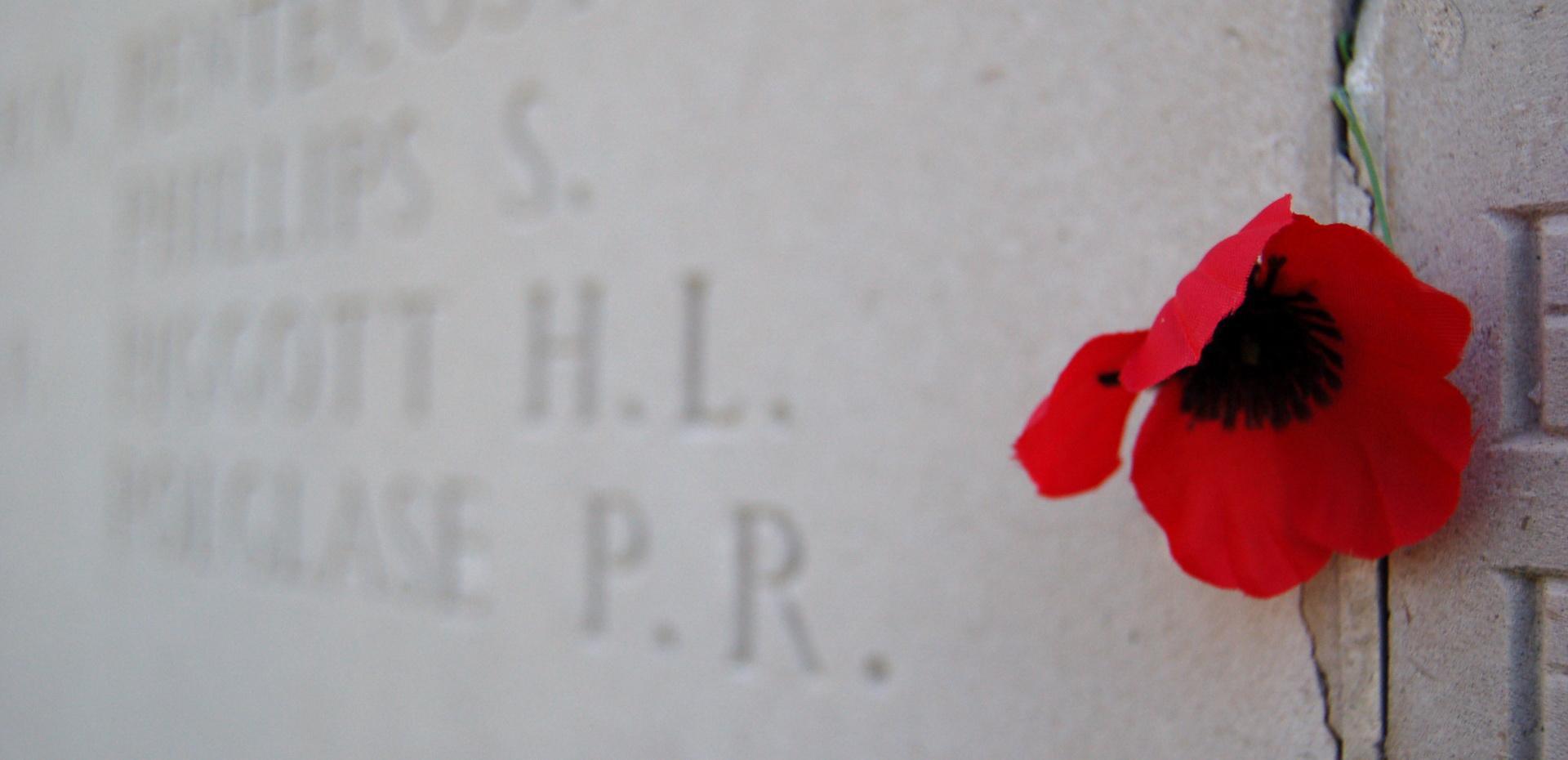 Mur mémoire et coquelicot